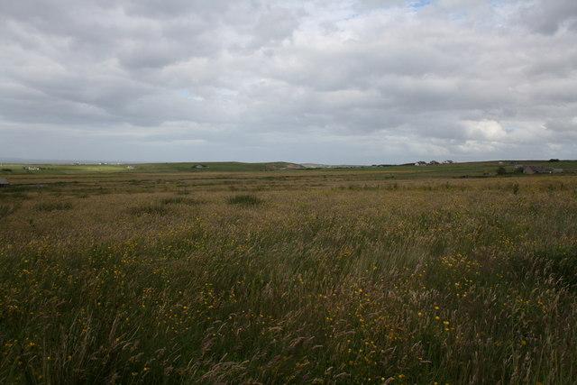 Fallow field by Canisbay