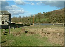 SX4268 : Quayside, Cotehele by Graham Taylor