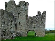 N8056 : Trim Castle by sarah gallagher