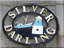 NJ9505 : Silver Darling by Colin Smith