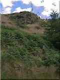 SN7950 : Rocky outcrops in Dalarwen forest by Rudi Winter