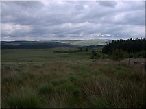 SN7851 : Source bog of the Nant Hendre'r Dail by Rudi Winter