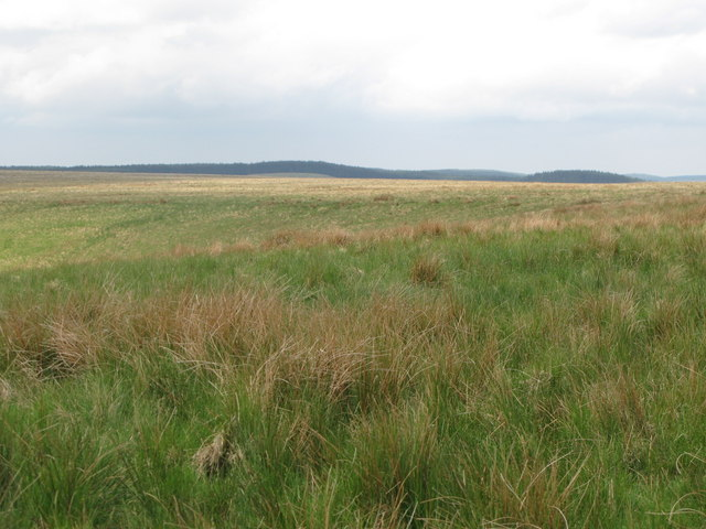 Butterburn Flow (from Shank End)
