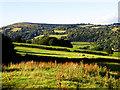 SO4322 : Border Farmland by Stuart Wilding