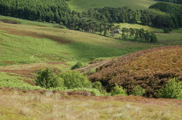 Gumscleuch Burn, Peat Hill