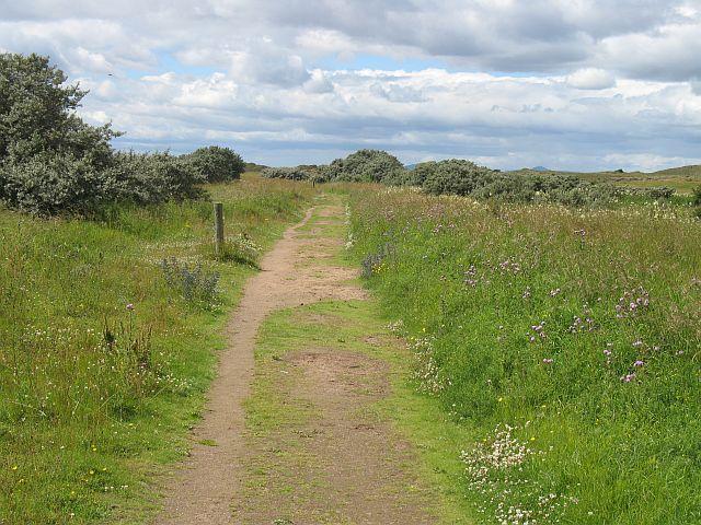 Path to the beach, Aberlady Bay