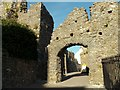 SN1300 : Part of Tenby Castle by Robert Edwards