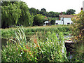 TF9924 : View across the River Wensum by Evelyn Simak