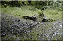 SD3898 : Culvert above Belle Grange by Tom Richardson