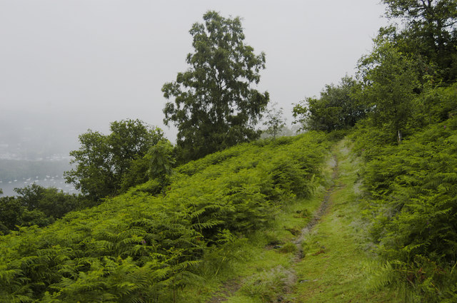 Path to Claife Heights