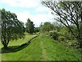 NS3976 : River Leven footpath by Lairich Rig