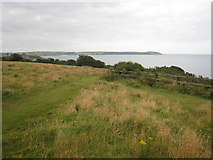 SX0551 : Clifftop field at Carlyon Bay by Rod Allday