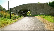 J0731 : Steenson's Bridge, Newry Canal by Albert Bridge