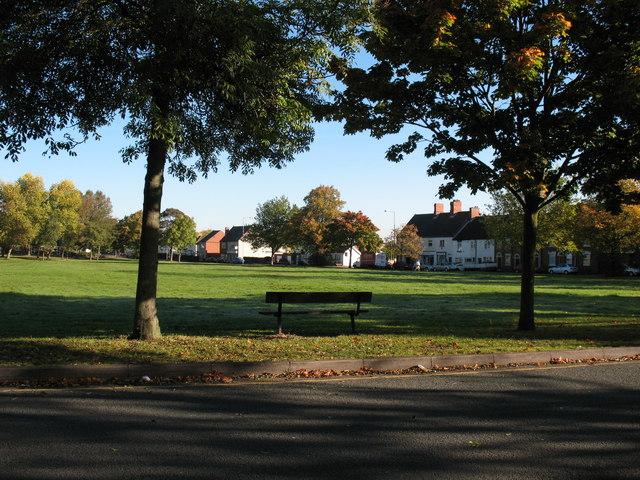 Pelsall Village Common