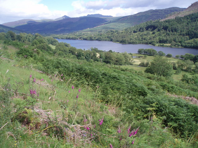 High Summer, Balquhidder