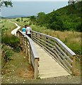 C0735 : Boardwalk, Ards Forest Park by Rossographer