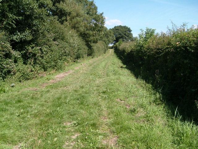 Garston's Lane