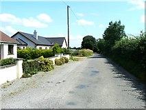 N5922 : Roadside cottages by James Allan