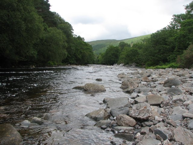 River Broom