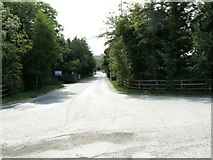 N7521 : Road to the quarry by James Allan