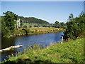 SO0592 : River Severn, Aberhafesp festival footbridge by kevin skidmore