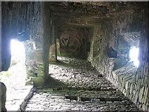 N9563 : Monktown Castle interior, Co. Meath by Kieran Campbell