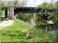SO0890 : River Severn,Glanhafren railway bridge. by kevin skidmore