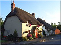 SU1449 : Cottages, Haxton by Andrew Smith