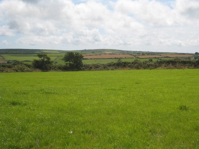 Pasture at Halwyn