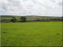 SW7033 : Pasture at Halwyn by Rod Allday