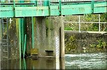 J3470 : Stranmillis weir, Belfast (2) by Albert Bridge
