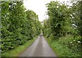 SK5078 : Gypsyhill Lane by Steve  Fareham