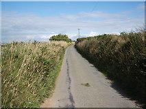 SM8331 : The road from Llanrhian eastwards towards Llanon by Keith Salvesen