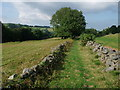 SJ2534 : Approaching Craignant by Tim Heaton