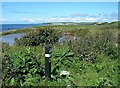 NS1900 : On The Coastal Path by Mary and Angus Hogg