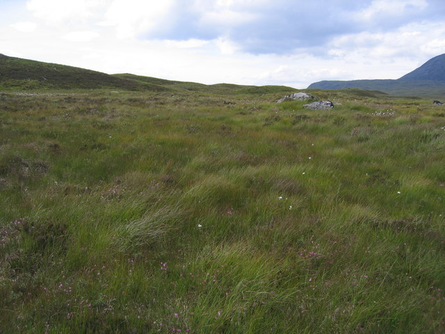Grassy moorland for mile after mile