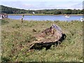 SM9711 : Old wreck at Hook Colliery Quay. by Shaun Butler