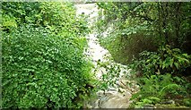 J4681 : Waterfall, Crawfordsburn Glen (7) by Albert Bridge