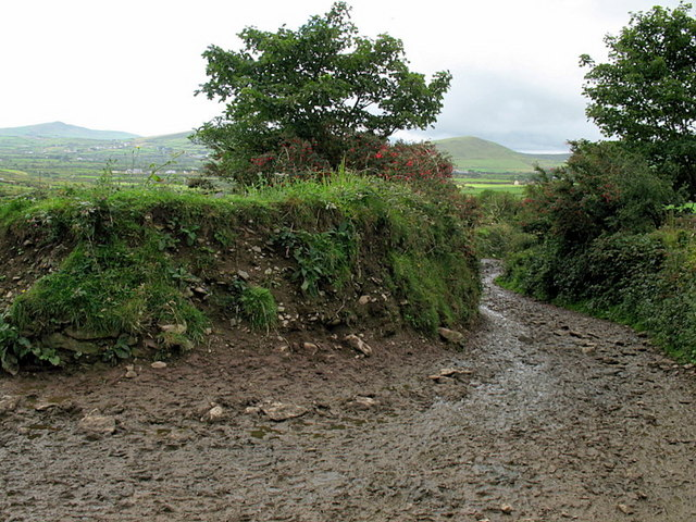 A muddy Dingle Way