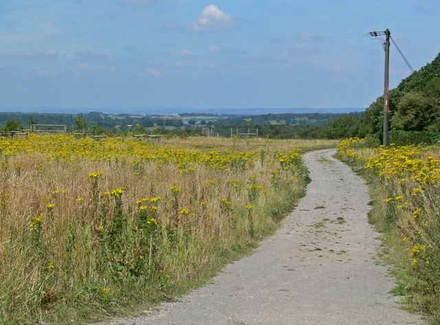 Track near Lount Wood
