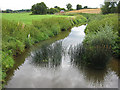 SO7723 : River Leadon running downstream by Pauline E