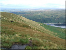 NY4614 : The slope from Long Grain to Whelter Bottom by David Brown
