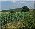 SK3922 : View towards Breedon Hill by Mat Fascione