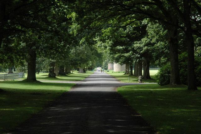 Avenue, Glamis Castle