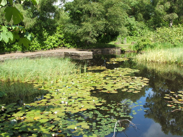Drowning Pond at Gallow Hill