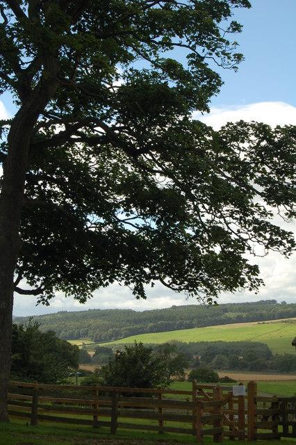 Tyne Valley, from Cherryburn
