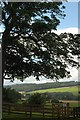NZ0762 : Tyne Valley, from Cherryburn by hayley green