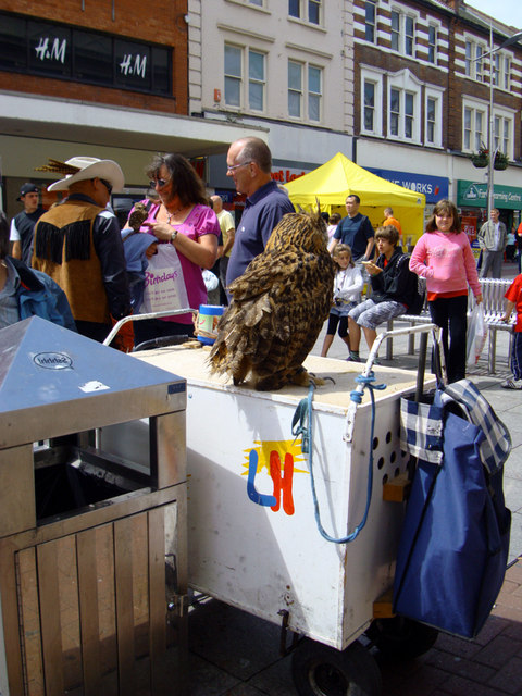 Southend-on-Sea owl man