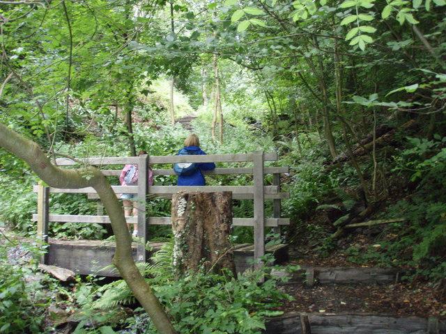 Bridge halfway up Orielton Gardens