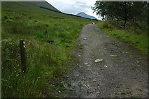 NN3039 : Military Road, Bridge of Orchy by Philip Halling